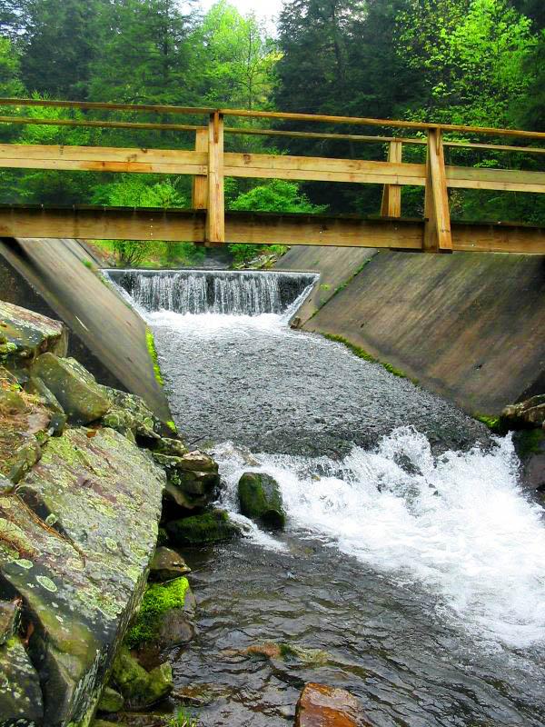 Bridge over the creek, Tussey Mountain, PA