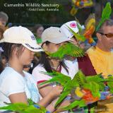Currumbin Wildlife Sanctuary