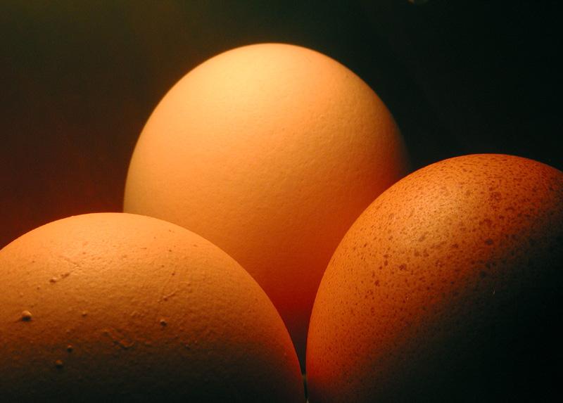 Tri-Eggle