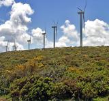 Windturbines, South Spain