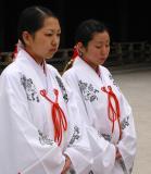 Meiji Shrine. Wedding