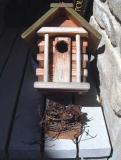 bird-house1.jpg