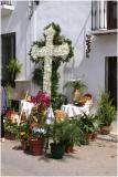 calle carabeo cross