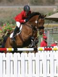 olympic_horse_trials