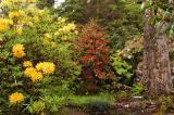 The Inverewe Gardens #1