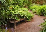 The Inverewe Gardens #4
