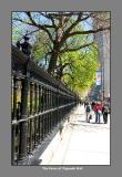 Fence of Osgoode Hall