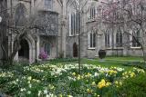 Grace Church Spring Garden