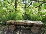 040522 Bench In Forest