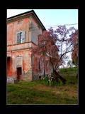 Casa Della Dori