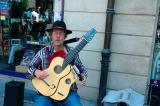 Harp guitar player