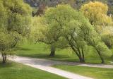 Arboretum3