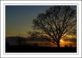 Foldhill Lane sunset, Martock