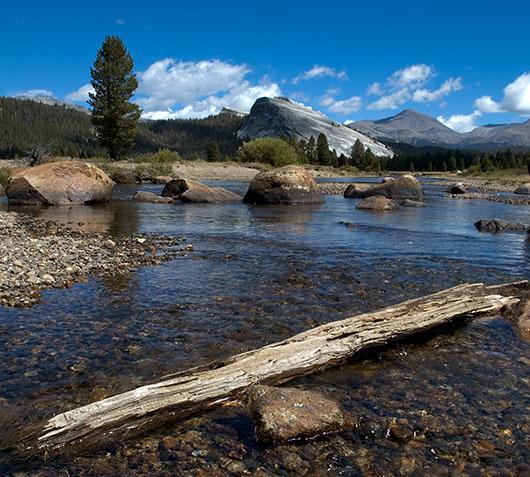 Tuolumne Creek