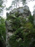 W rezerwacie skalnym Bubniszcze(143-4351_IMG.JPG)