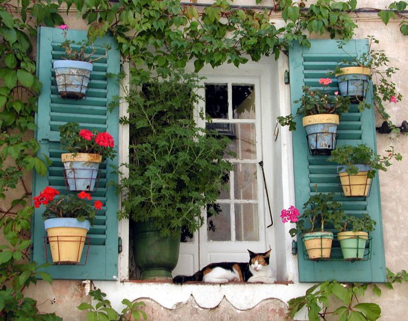 Ile Rousse, Corsica