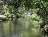 Moss Park Canal