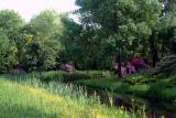 Garden Near Hostel