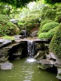 Japanese Gardens at Brooklyn Botanic