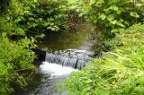 Dingle waterfall