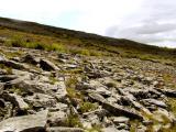 Burren hill