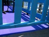 gloucester blue and purple.jpg