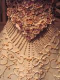 dress made from shells.jpg