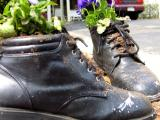 shoes for plants.jpg