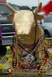 Krewe of the Golden Calf 2005