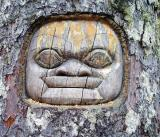tree carving on mt roberts juneau