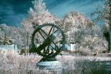20 D Color Infrared 1