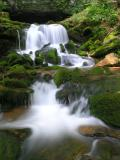 A Gallery of Imagery from the Little River, Trigg County, KY