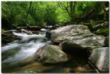 North Carolina Stream.jpg