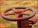 Drops and rust