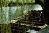 Punts on the Cam, Cambridge, England