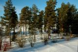 winter_update