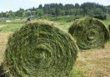 040525 Silage Roll