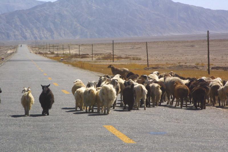 On the Road to Tashkurgan