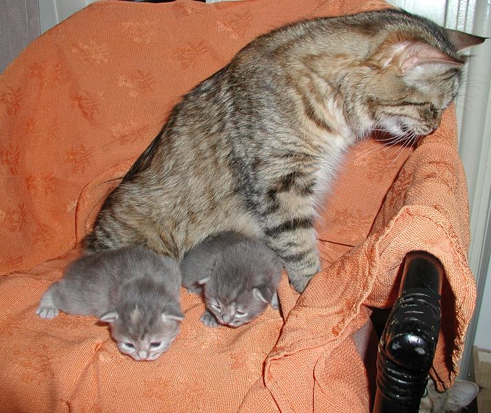 Roosa wants to see how the other babies  are doing.