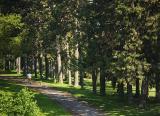 Walkers in the Arboretum