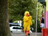 Friendly Duck.jpg(263)