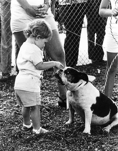 Ugly dog, dont you smile!