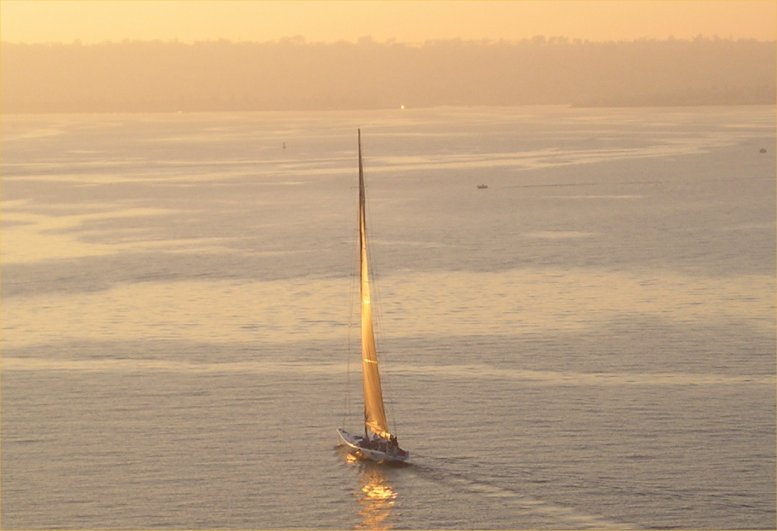 Sailboat in San Diego