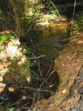 streambed