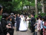 Typhoon Bride