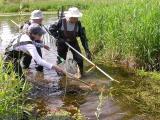 Katrina, Brian and Noel collecting fish at Joy's Road