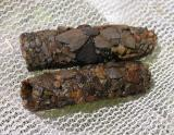Caddisfly larva tubes made of bits of stone