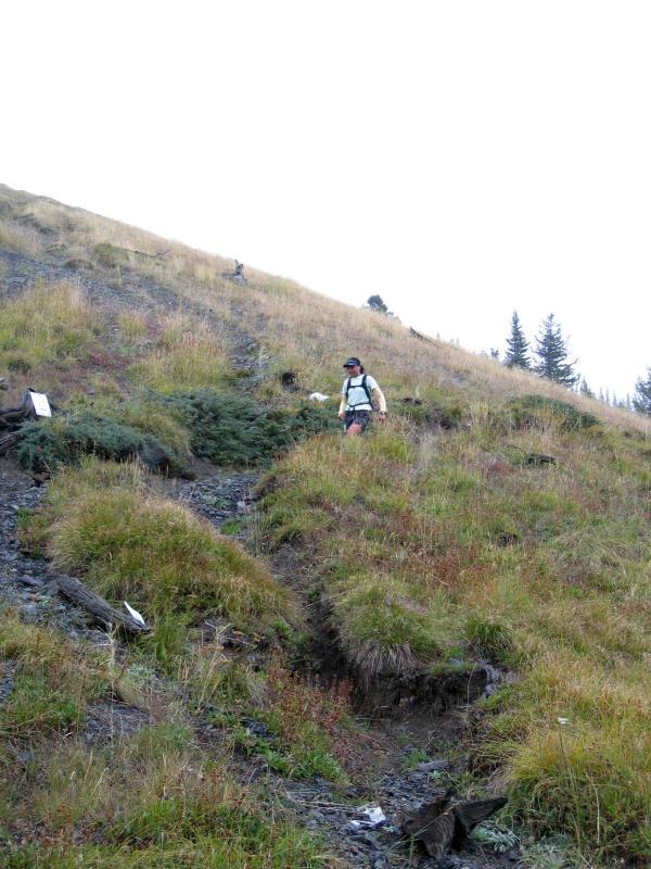 Descending Windy Pass