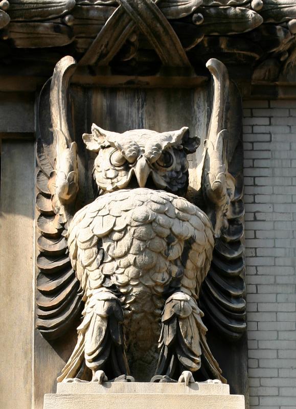 Owl on Broadway