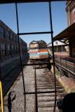A retired Amtrak loco framed through a caboose's ladder.